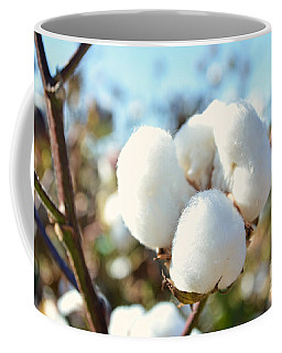 Cotton Boll Iv Coffee Mug