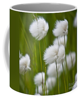 Cottonsedge Coffee Mug