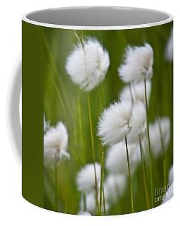 Cottonsedge Coffee Mug by Heiko Koehrer-Wagner
