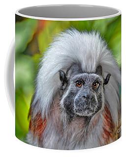 Cottontop Tamarin Coffee Mug by Savannah Gibbs