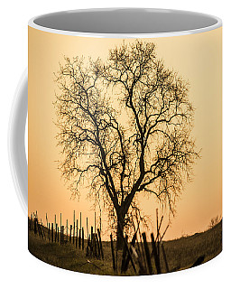 Country Fence Sunset Coffee Mug