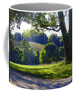 Country Landscape Coffee Mug