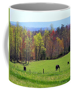 Coffee Mug featuring the photograph Countryside In Spring by Kathryn Meyer