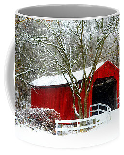 Cover Bridge Beauty Coffee Mug