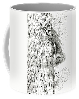 Coveting Nuts Coffee Mug