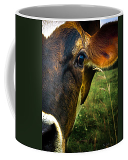 Cow Eating Grass Coffee Mug