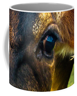 Cow Eating Grass Coffee Mug by Bob Orsillo