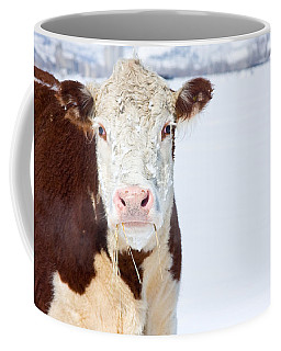 Cow - Fine Art Photography Print Coffee Mug