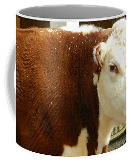 Coffee Mug featuring the photograph Cow Lickin' Good by Emmy Marie Vickers