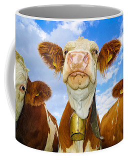 Cow Looking At You - Funny Animal Picture Coffee Mug