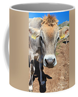 Cow On Alpine Pasture Coffee Mug by Antonio Scarpi