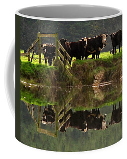 Cow Reflections Coffee Mug