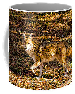 Coyote Coffee Mug