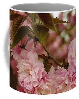 Crab Apple Blossoms Coffee Mug by James C Thomas