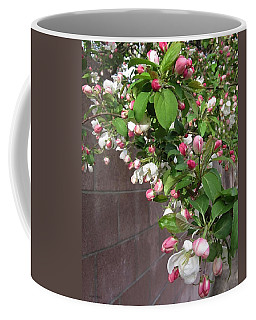 Coffee Mug featuring the photograph Crabapple Blossoms And Wall by Donald S Hall