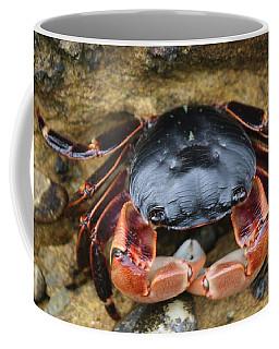 Crabby Pants  Coffee Mug