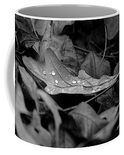Coffee Mug featuring the photograph Cradle by Viviana  Nadowski