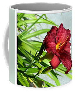 Cranberry Colored Lily Coffee Mug