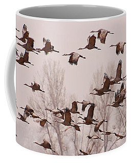 Coffee Mug featuring the photograph Cranes Across The Sky by Don Schwartz