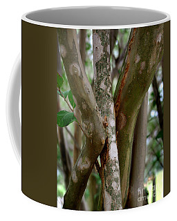 Coffee Mug featuring the photograph Crape Myrtle Branches by Peter Piatt