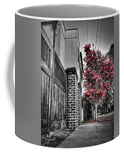 Crape Myrtles In Historic Downtown Charleston 2 Coffee Mug