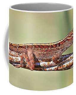 Crawling Lizard Coffee Mug by Cyril Maza