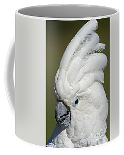 Crazy As Crackers... Coffee Mug