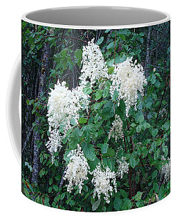 Creambush Oceanspray Coffee Mug