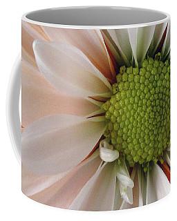 Coffee Mug featuring the photograph Creamsicle by Jean OKeeffe Macro Abundance Art