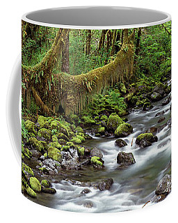 Creek Olympic National Park Wa Usa Coffee Mug by Panoramic Images