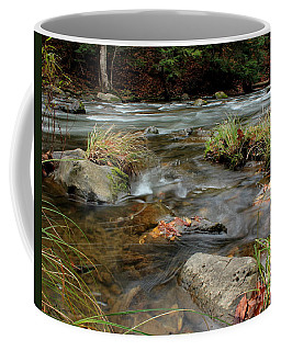 Whispering Waters Coffee Mug