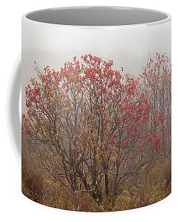 Crimson Fog Coffee Mug