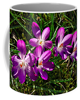 Crocus In The Grass Coffee Mug