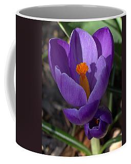 Crocus Mother And Child Coffee Mug