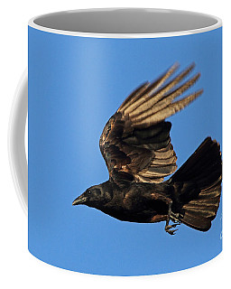 Coffee Mug featuring the photograph Crow In Flight by Meg Rousher