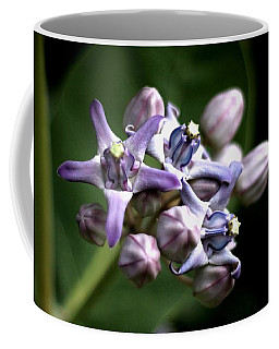 Coffee Mug featuring the photograph Crown Flower - Purple by Ramabhadran Thirupattur