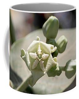 Coffee Mug featuring the photograph Crown Flower by Ramabhadran Thirupattur