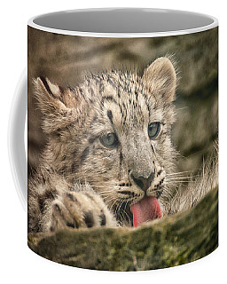 Cub And Tongue Coffee Mug