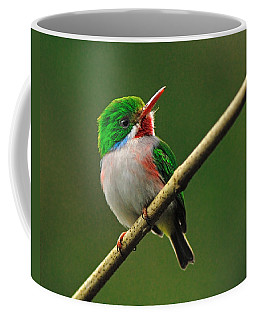 Cuban Tody Coffee Mug