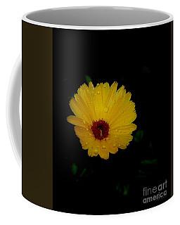 Cup Coffee Mug by Marija Djedovic