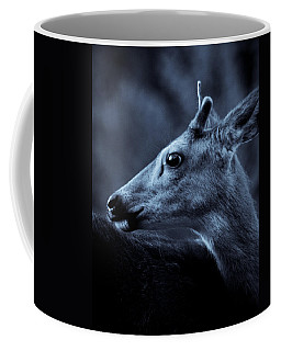 Coffee Mug featuring the photograph Curious  by Adria Trail