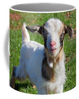 Curious Baby Goat Coffee Mug