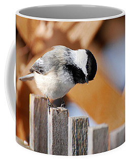 Curious Chickadee Coffee Mug