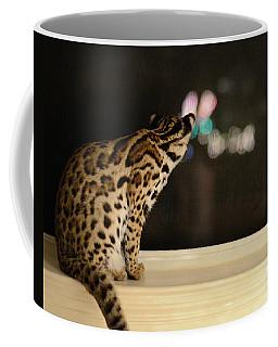 Curious Cub Coffee Mug