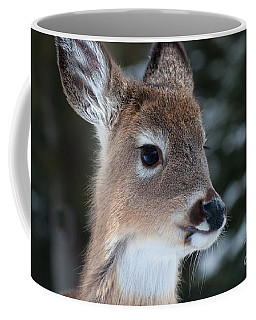 Curious Fawn Coffee Mug by Bianca Nadeau