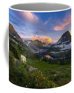 Coffee Mug featuring the photograph Curious Goat by Dustin  LeFevre