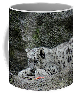 Curious Snow Leopard Cub Coffee Mug