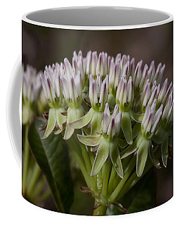 Coffee Mug featuring the photograph Curtiss' Milkweed #3 by Paul Rebmann