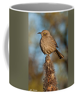 Curve-billed Thrasher On A Cactus Coffee Mug
