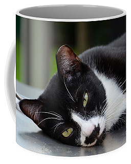 Cute Black And White Tuxedo Cat With Nipped Ear Rests  Coffee Mug